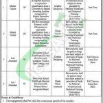 Women University Multan Jobs