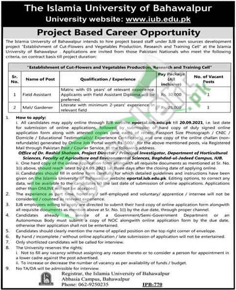 IUB Bahawalpur Jobs
