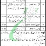Transport and Mass Transit Department Sindh Jobs