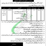 Armed Forces Inspectorate of Medical Stores Lahore Jobs