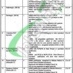 District Health Authority Sahiwal Upper Jobs